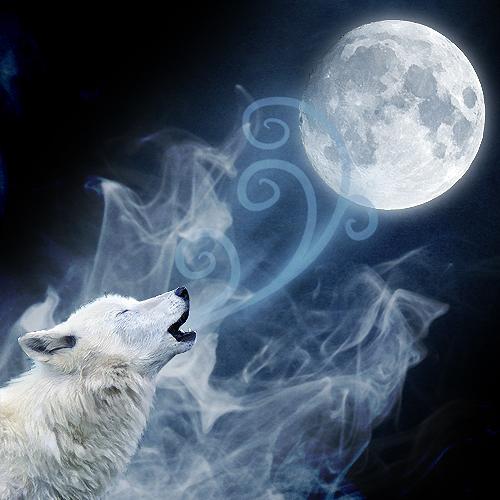 Friday May 10, 2013 New Moon ~ Healing